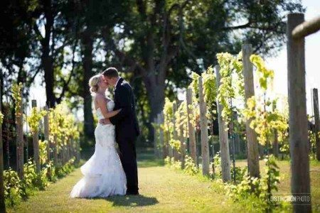 Candace & Justin catch an amazing backdrop in Whistler's Vineyard