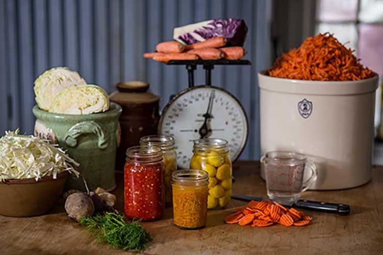 workshop fermentation